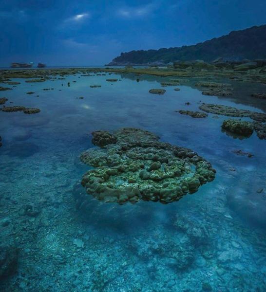 Khám phá 7 nơi lặn biển tuyệt vời tại châu Á Ảnh 2