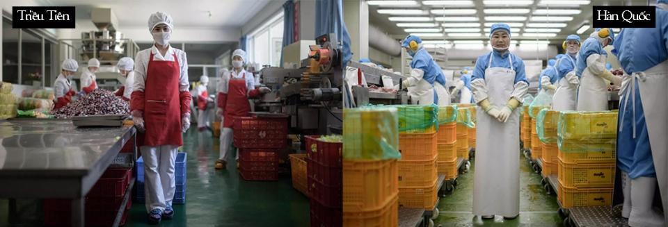 Cuộc sống hai miền Nam - Bắc Triều Tiên có gì khác nhau? Ảnh 10