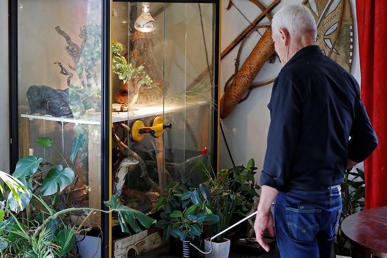 Ông lão nuôi hơn 400 con cá sấu, bò sát ngay trong nhà Ảnh 10