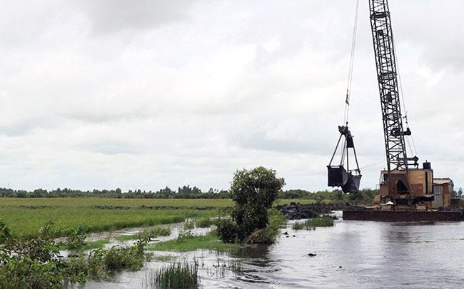 Các tỉnh đồng bằng sông Cửu Long chủ động ứng phó lũ, bảo vệ lúa Ảnh 1