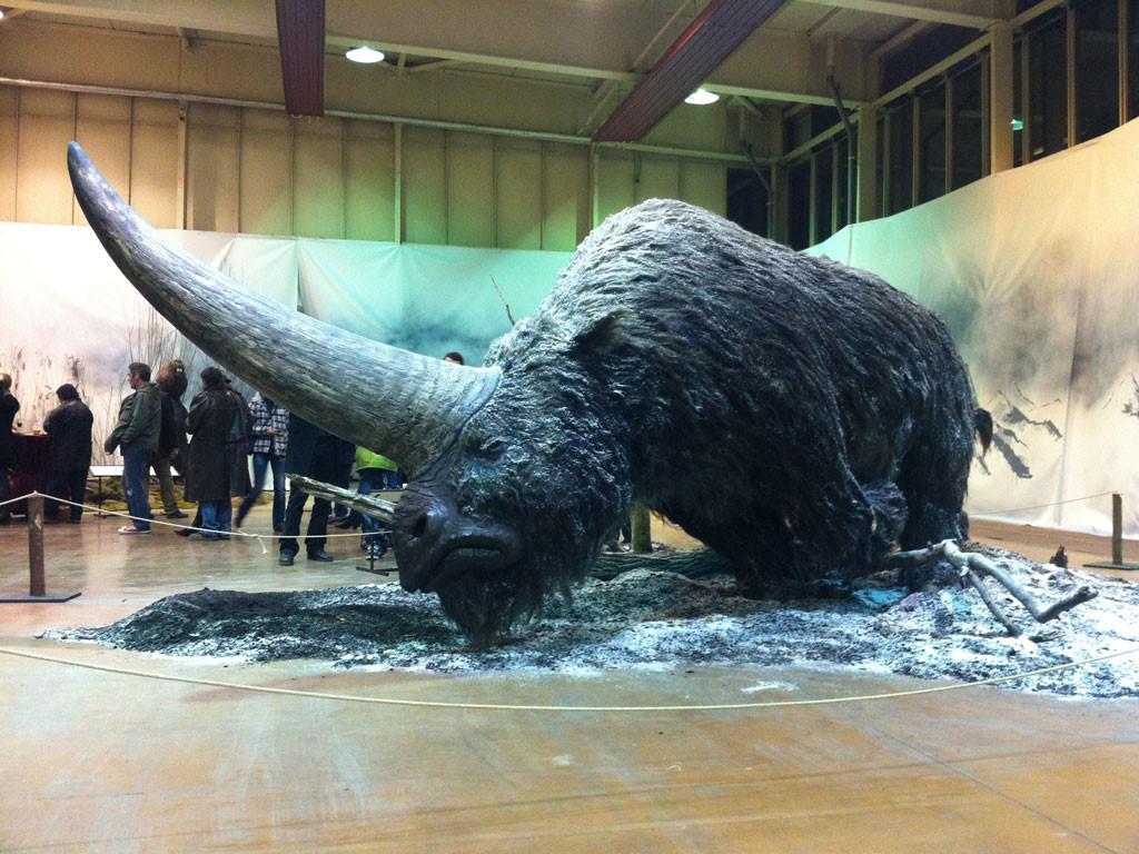 Xác định thời điểm kỳ lân bị tuyệt chủng tại Siberia Ảnh 1