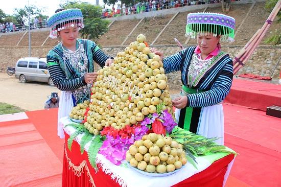 Sơn La: Đưa sản phẩm táo sơn tra vươn xa trên thị trường Ảnh 4