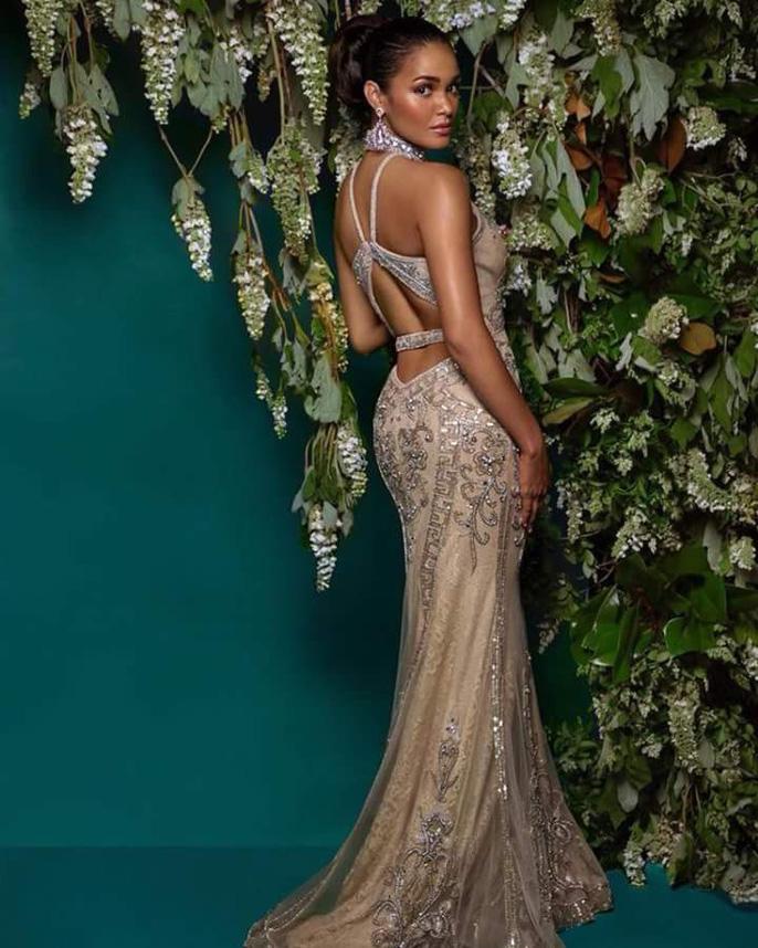 Cận cảnh vẻ đẹp tân Hoa hậu Hoàn vũ Puerto Rico Ảnh 9