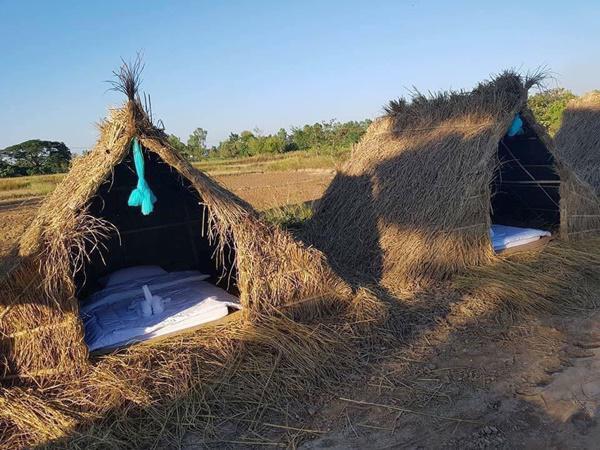 Chiêm ngưỡng khách sạn 'uyên ương' nằm giữa cánh đồng lúa Ảnh 2