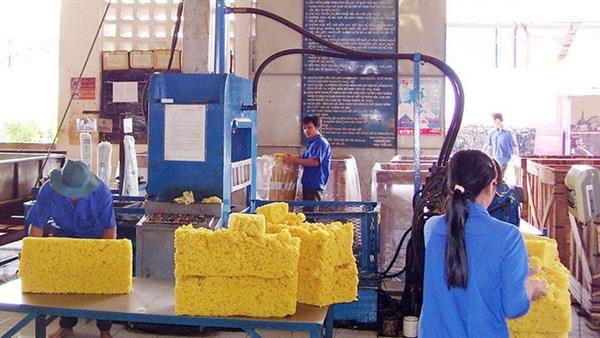 Chiến tranh thương mại Hoa Kỳ-Trung Quốc 'kéo tụt' xuất khẩu cao su? Ảnh 1