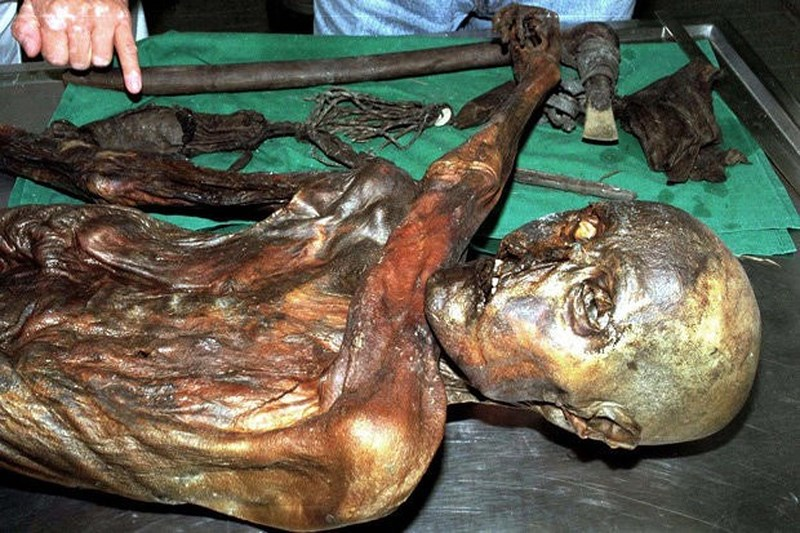 Giải mã hình xăm trên xác ướp Otzi 5.300 tuổi Ảnh 2