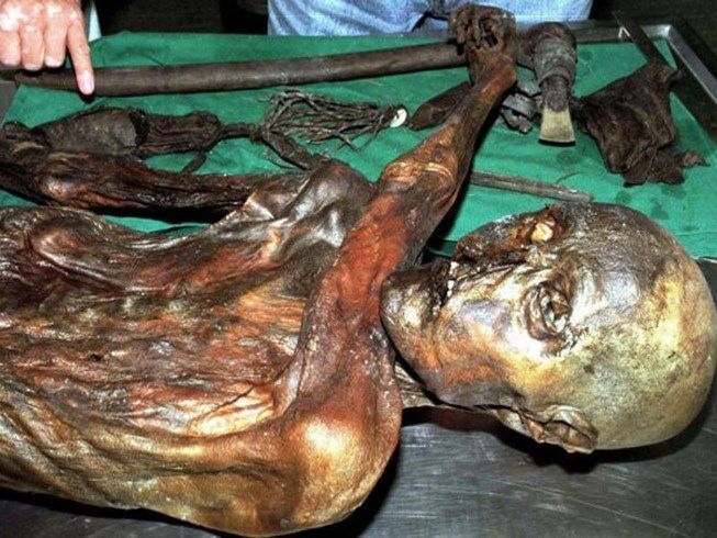 Giải mã hình xăm trên xác ướp Otzi 5.300 tuổi Ảnh 1