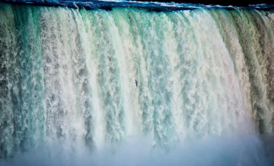 Thác Niagara khác lạ nhìn từ hai phía Mỹ và Canada Ảnh 8