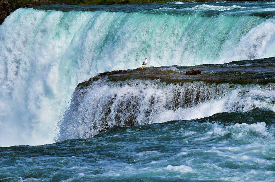 Thác Niagara khác lạ nhìn từ hai phía Mỹ và Canada Ảnh 5