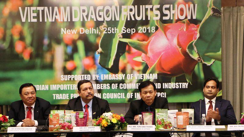 Đưa trái thanh long Bình Thuận chiếm lĩnh thị trường Ấn Độ Ảnh 1