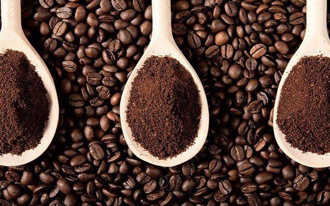 Giá cà phê hôm nay 27/9: Giao dịch trầm lắng Ảnh 1