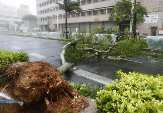 Chưa hồi phục sau bão Jebi, Nhật Bản lại hứng bão Trami Ảnh 4