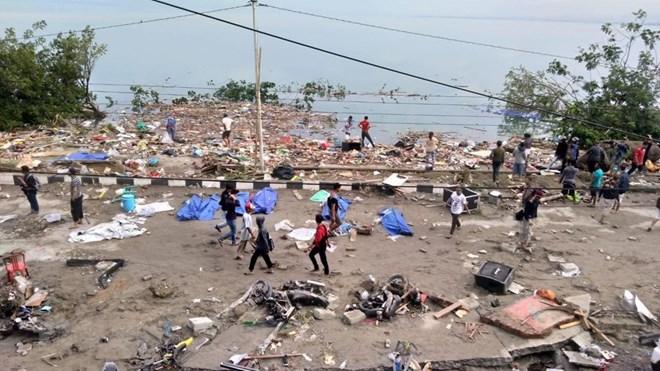 Indonesia: Thiết bị cảm biến không phát hiện các đợt sóng thần Ảnh 1