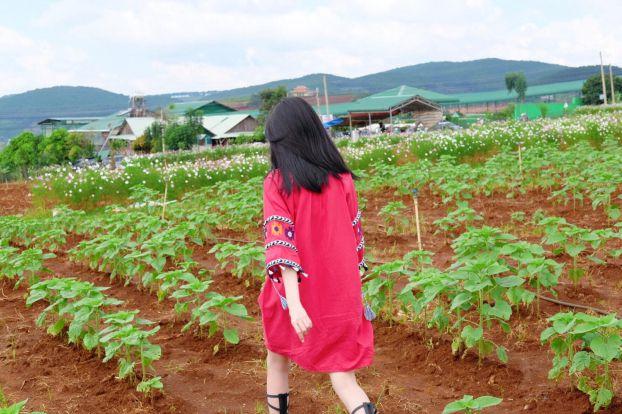 Khoe ảnh đi du lịch Đà Lạt, Elly Trần được khen hết lời vì trẻ trung như thiếu nữ Ảnh 6