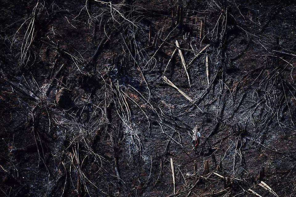 Những bức ảnh ấn tượng về môi trường khiến nhân loại phải suy ngẫm Ảnh 15