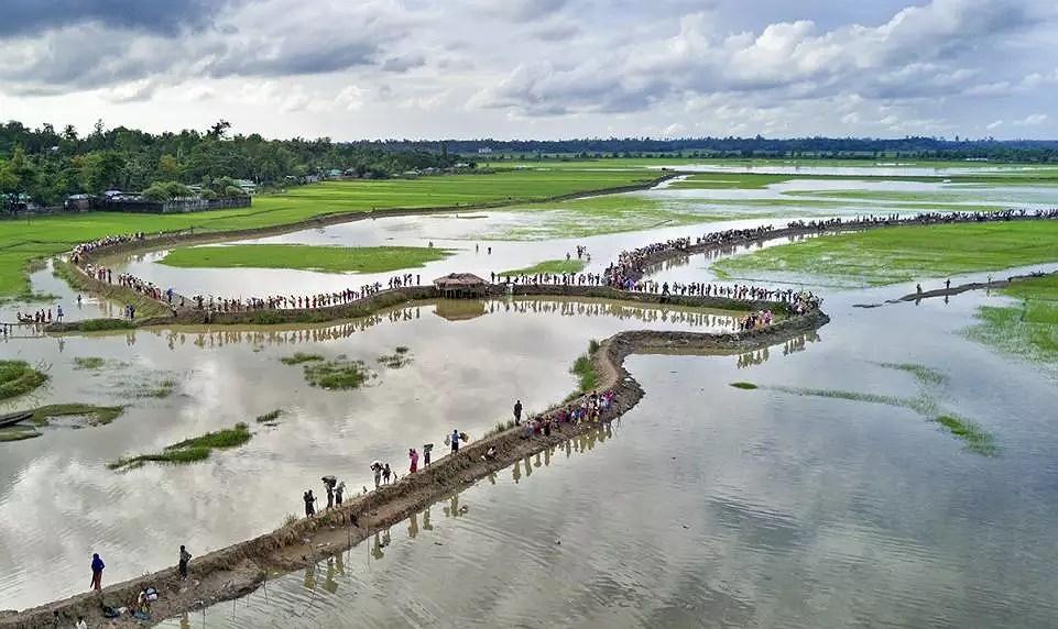Những bức ảnh ấn tượng về môi trường khiến nhân loại phải suy ngẫm Ảnh 4