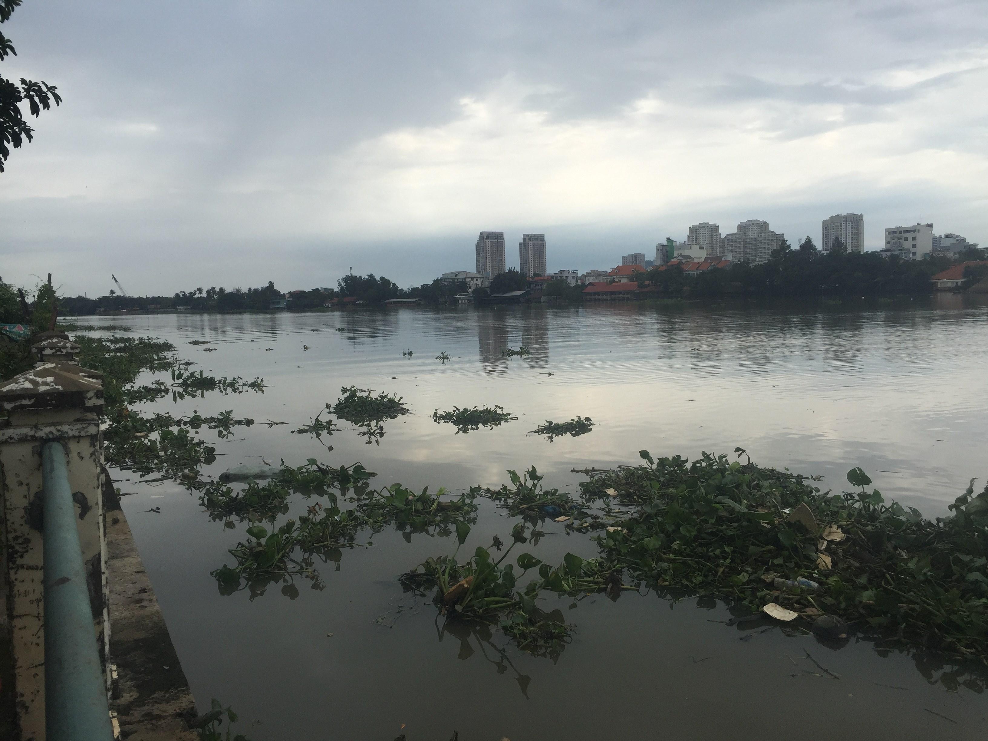 Phát hiện thi thể nam thanh niên trôi trên sông Sài Gòn Ảnh 1