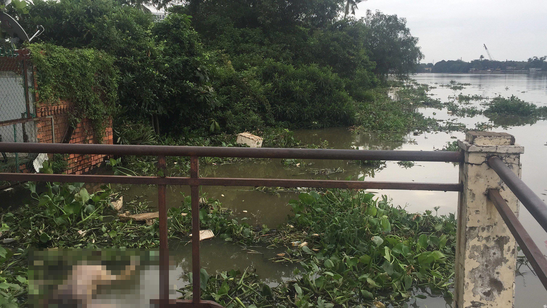 Phát hiện thi thể nam thanh niên trôi trên sông Sài Gòn Ảnh 2