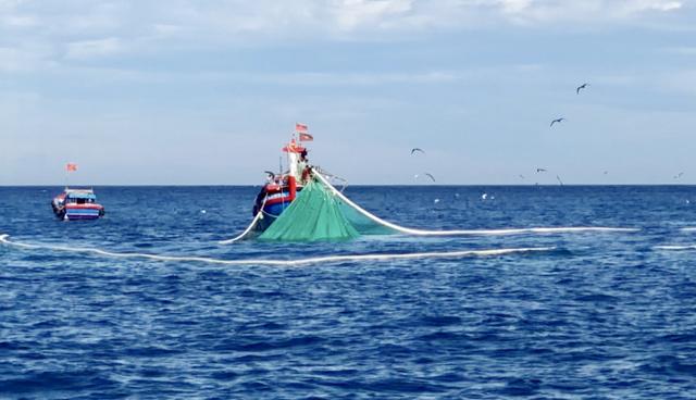 Những 'thợ săn' tiền ở vùng biển: Thu về hàng trăm triệu trong 1-2h