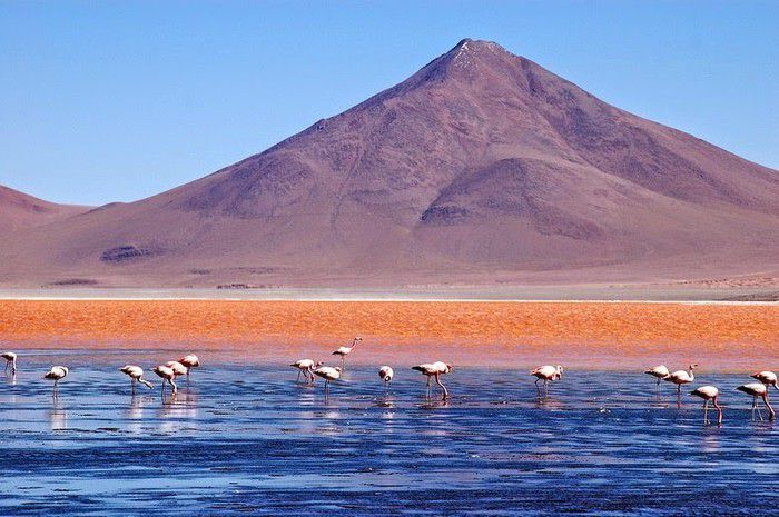 Bí mật trăm năm trong hồ nước 'kinh dị' đỏ rực như máu nổi tiếng Ảnh 8