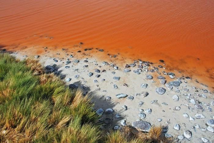 Bí mật trăm năm trong hồ nước 'kinh dị' đỏ rực như máu nổi tiếng Ảnh 5