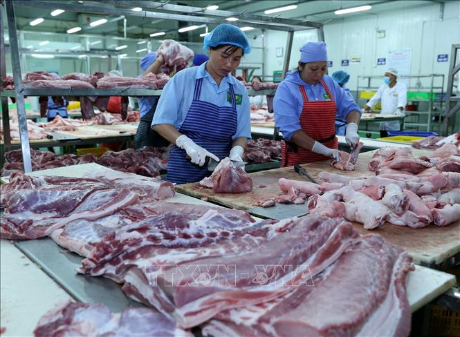 Thị trường cuối năm không lo thiếu thịt lợn Ảnh 1