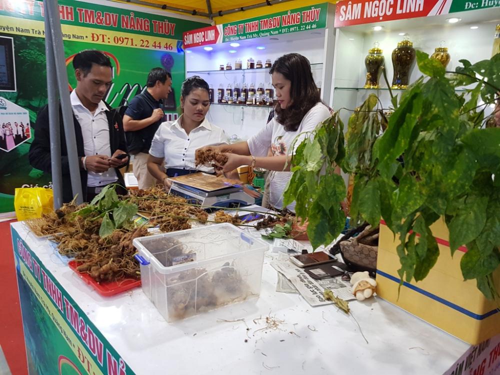 Chợ phiên sâm núi Ngọc Linh thu 4,2 tỷ đồng Ảnh 1