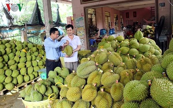 Xuất khẩu khởi sắc tạo động lực mạnh mẽ cho nền kinh tế Ảnh 2