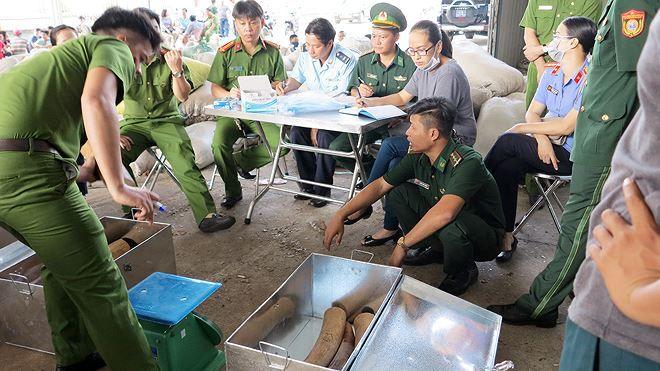 8 tấn ngà voi, vảy tê khai báo là phế liệu nhập về Đà Nẵng Ảnh 1