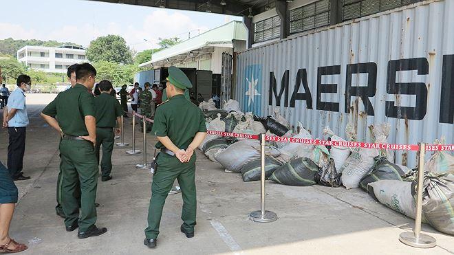 8 tấn ngà voi, vảy tê khai báo là phế liệu nhập về Đà Nẵng Ảnh 2