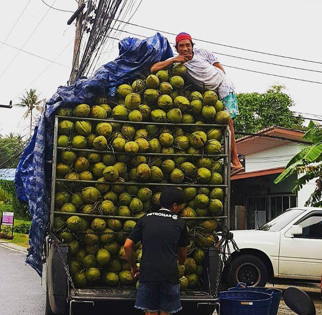 Dù đi Thái Lan nhiều lần nhưng ít người để ý đến 15 điều tuyệt vời này Ảnh 9