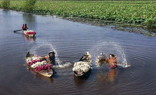 Làng nghề ở 'đệ nhất cù lao' Nam Bộ Ảnh 1
