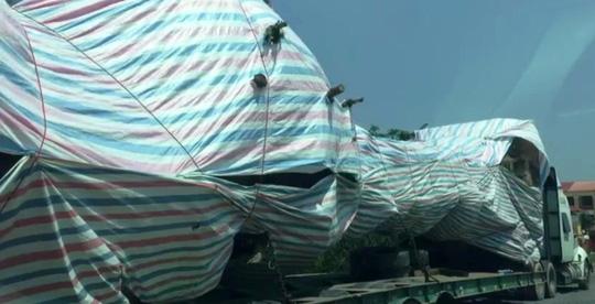 Bắt cây 'quái thú' lọt nhiều trạm CSGT miền Trung Ảnh 1