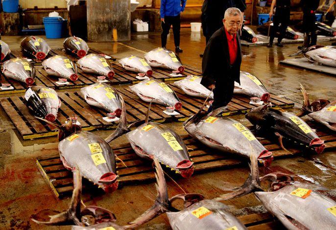 'Nhà bếp của Nhật Bản' đóng cửa Ảnh 1