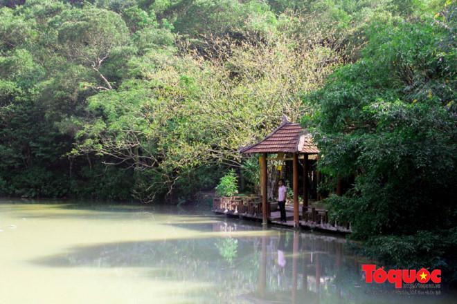 Khám phá ngôi chùa nằm trong lòng núi đẹp như 'tiên cảnh' ở Cố đô Huế Ảnh 4