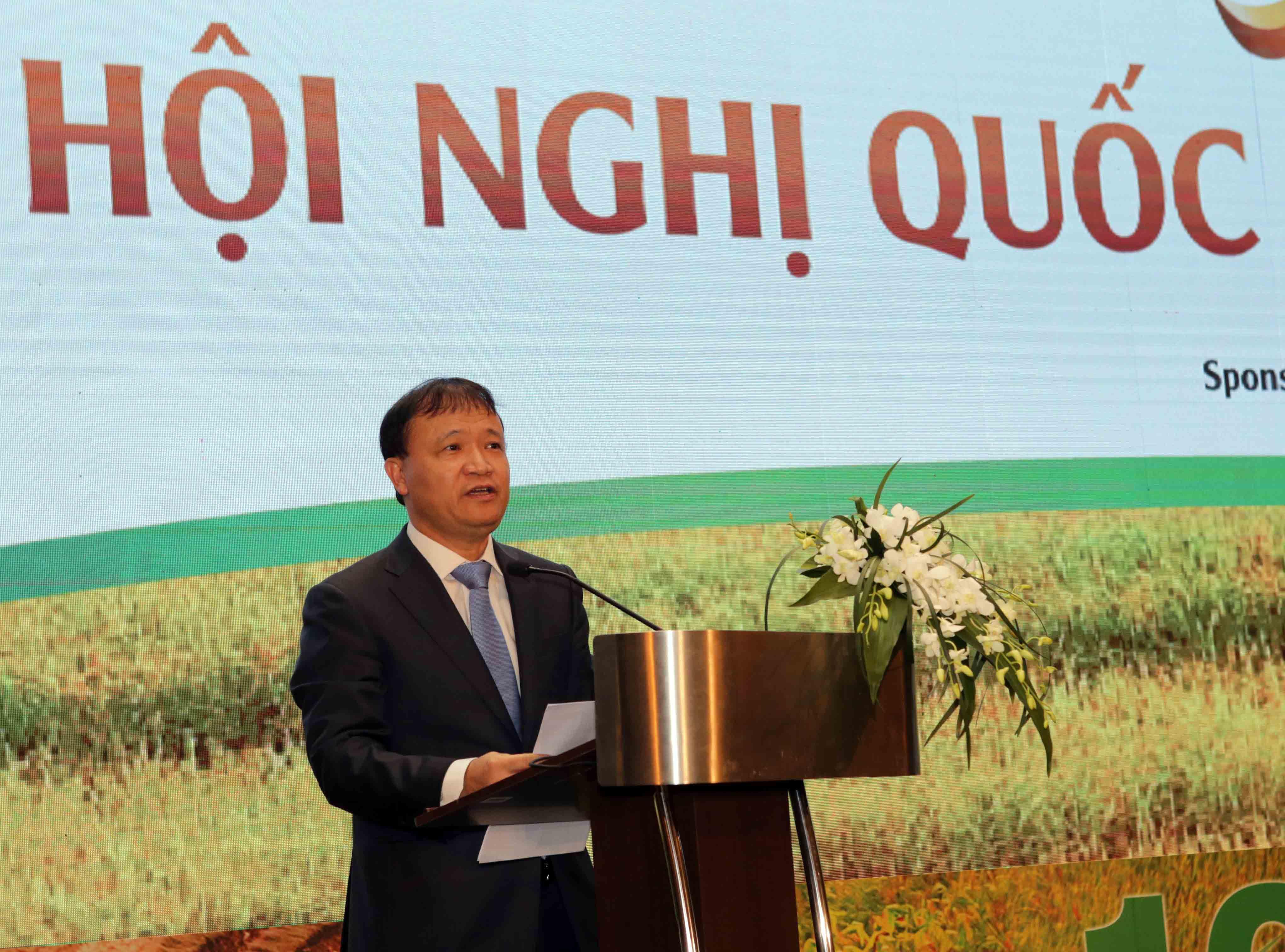 Gạo xuất khẩu của Việt Nam tăng liên tục cả về lượng và chất Ảnh 1