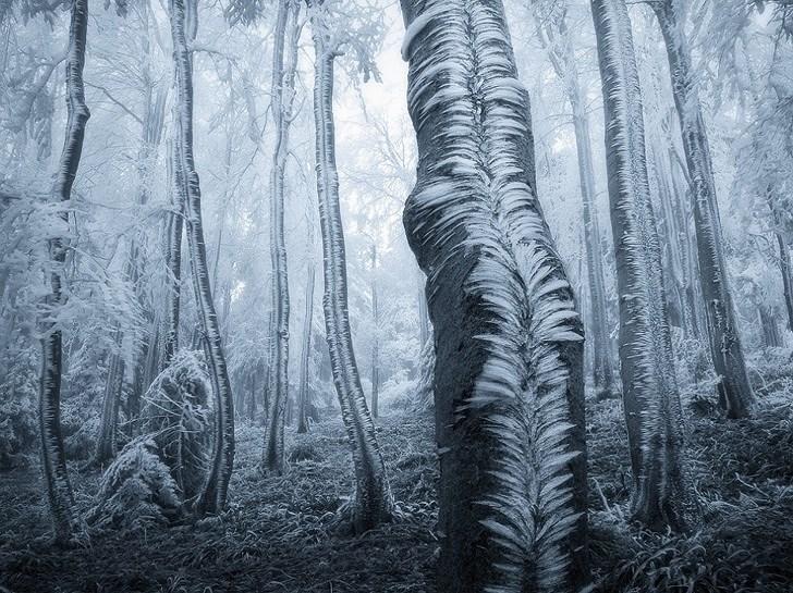 Thiên nhiên đẹp ngỡ ngàng tưởng như được Photoshop Ảnh 9