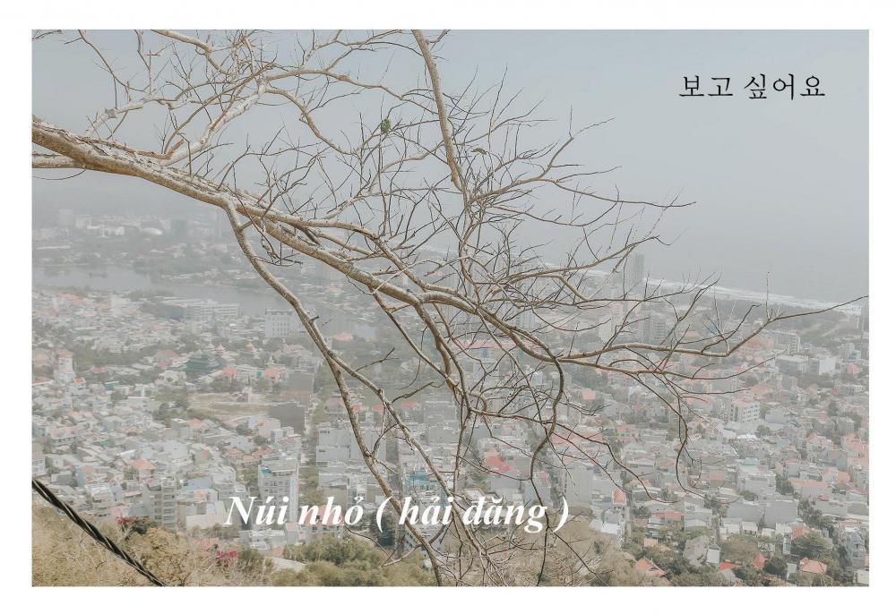 Đang trầm trồ bộ ảnh Hàn Quốc này sao đẹp quá thì ngỡ ngàng hóa ra là chụp... 100% tại phố biển Vũng Tàu Ảnh 9