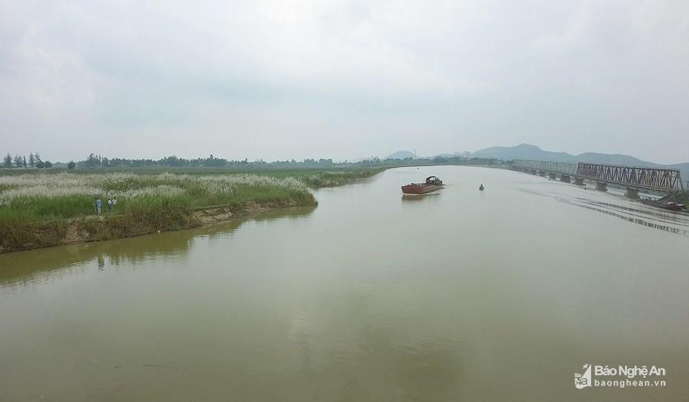 Vẻ đẹp trinh nguyên của bãi lau bên triền sông Lam Ảnh 4
