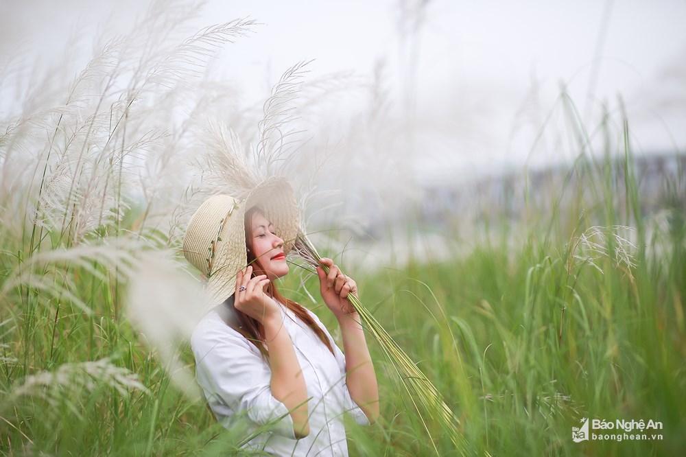 Vẻ đẹp trinh nguyên của bãi lau bên triền sông Lam Ảnh 7