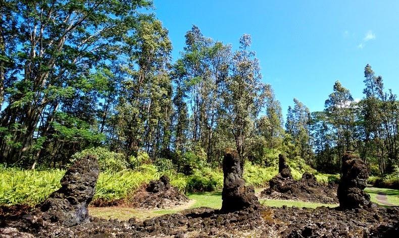 Bí ẩn khó tin về rừng cây nham thạch độc đáo nhất hành tinh Ảnh 4