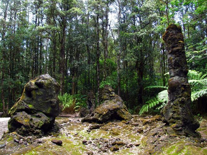 Bí ẩn khó tin về rừng cây nham thạch độc đáo nhất hành tinh Ảnh 9