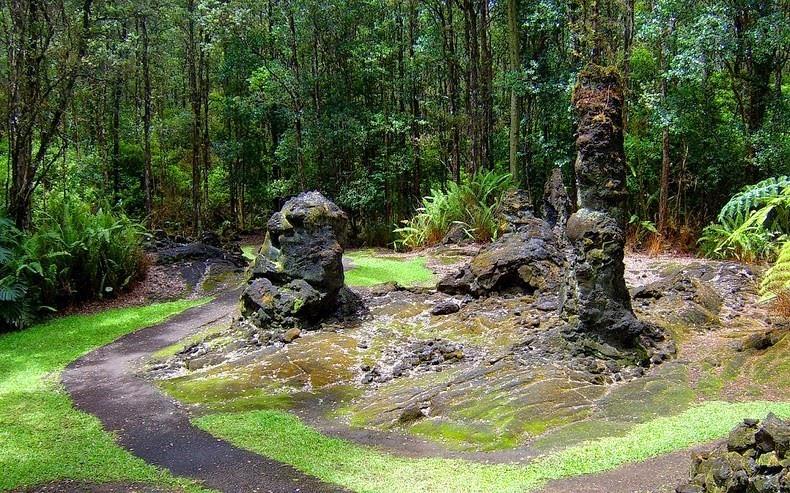 Bí ẩn khó tin về rừng cây nham thạch độc đáo nhất hành tinh Ảnh 3