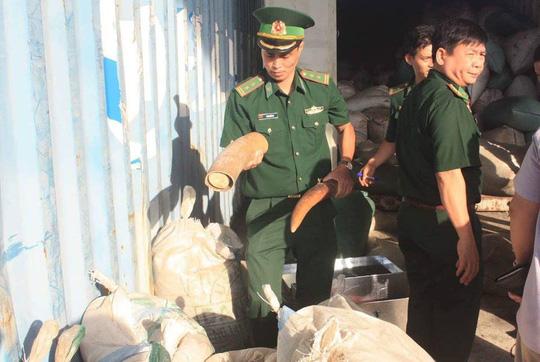 Chủ tịch Đà Nẵng khen thưởng vụ bắt giữ hơn 10 tấn ngà voi nhập lậu Ảnh 2
