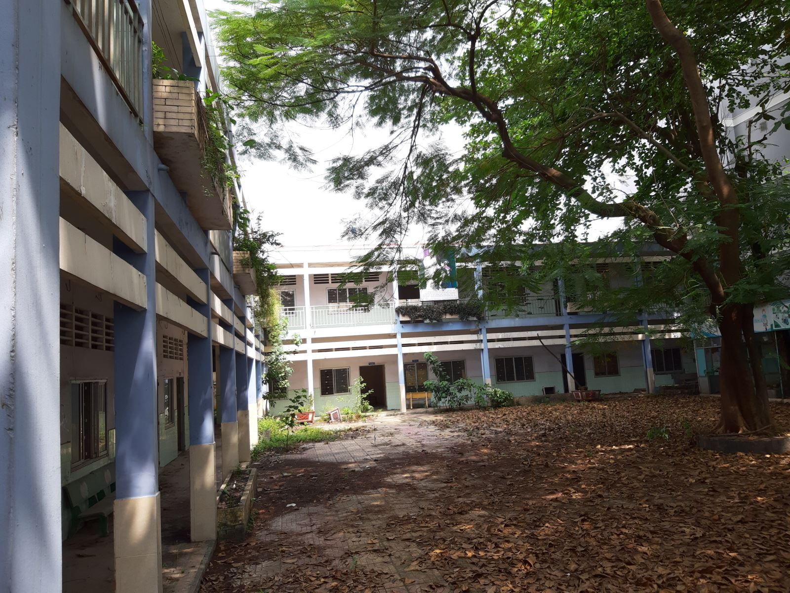 Học sinh phải đi học nhờ, trường thì bỏ hoang gần 3 năm Ảnh 2