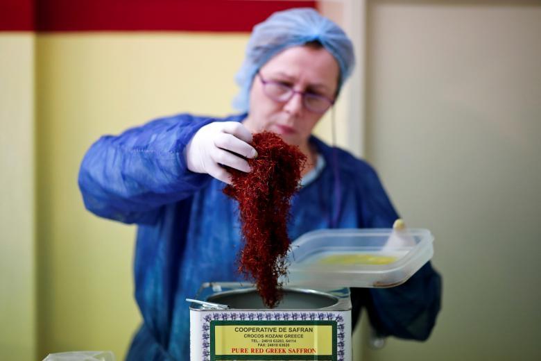 Nghề kinh doanh nhụy hoa nghệ tây - saffron 'nở rộ' ở Hy Lạp Ảnh 11