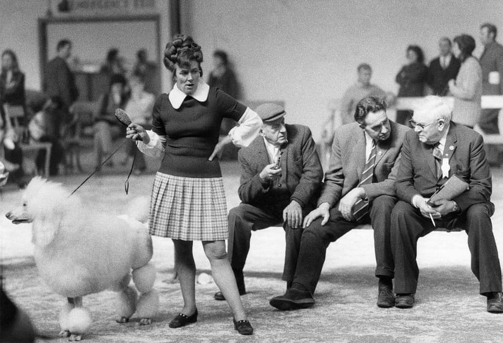 Những bức ảnh đen trắng hiếm có về Dog Show ở Anh giữa thế kỷ 20 Ảnh 5