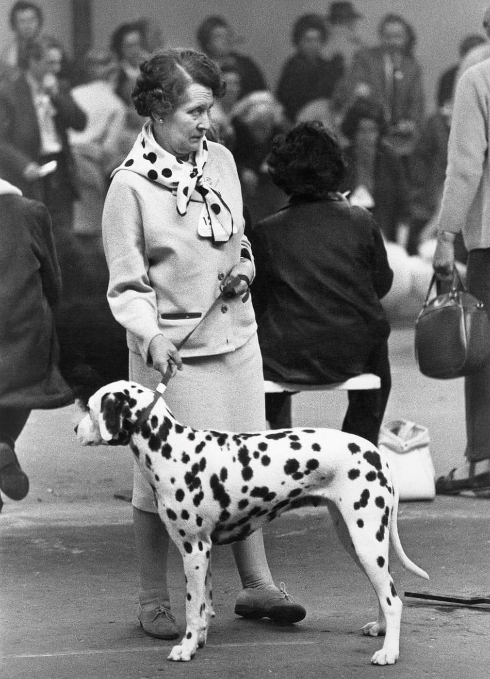 Những bức ảnh đen trắng hiếm có về Dog Show ở Anh giữa thế kỷ 20 Ảnh 3