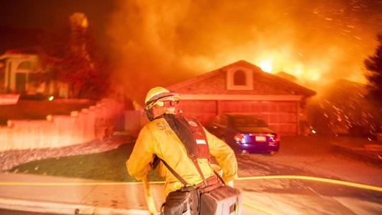 Hàng loạt ngôi sao Hollywood sơ tán khẩn cấp vì cháy rừng Ảnh 5