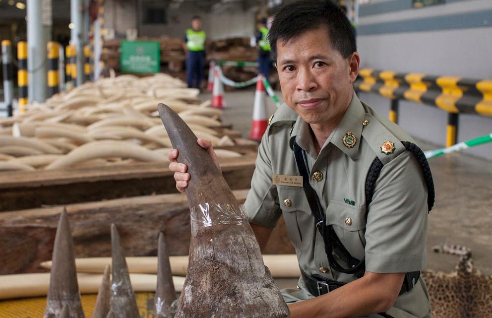 Trung Quốc tạm cấm buôn bán hổ, tê giác Ảnh 1